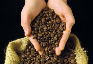 Bild-1-Kaffeebohnen-2